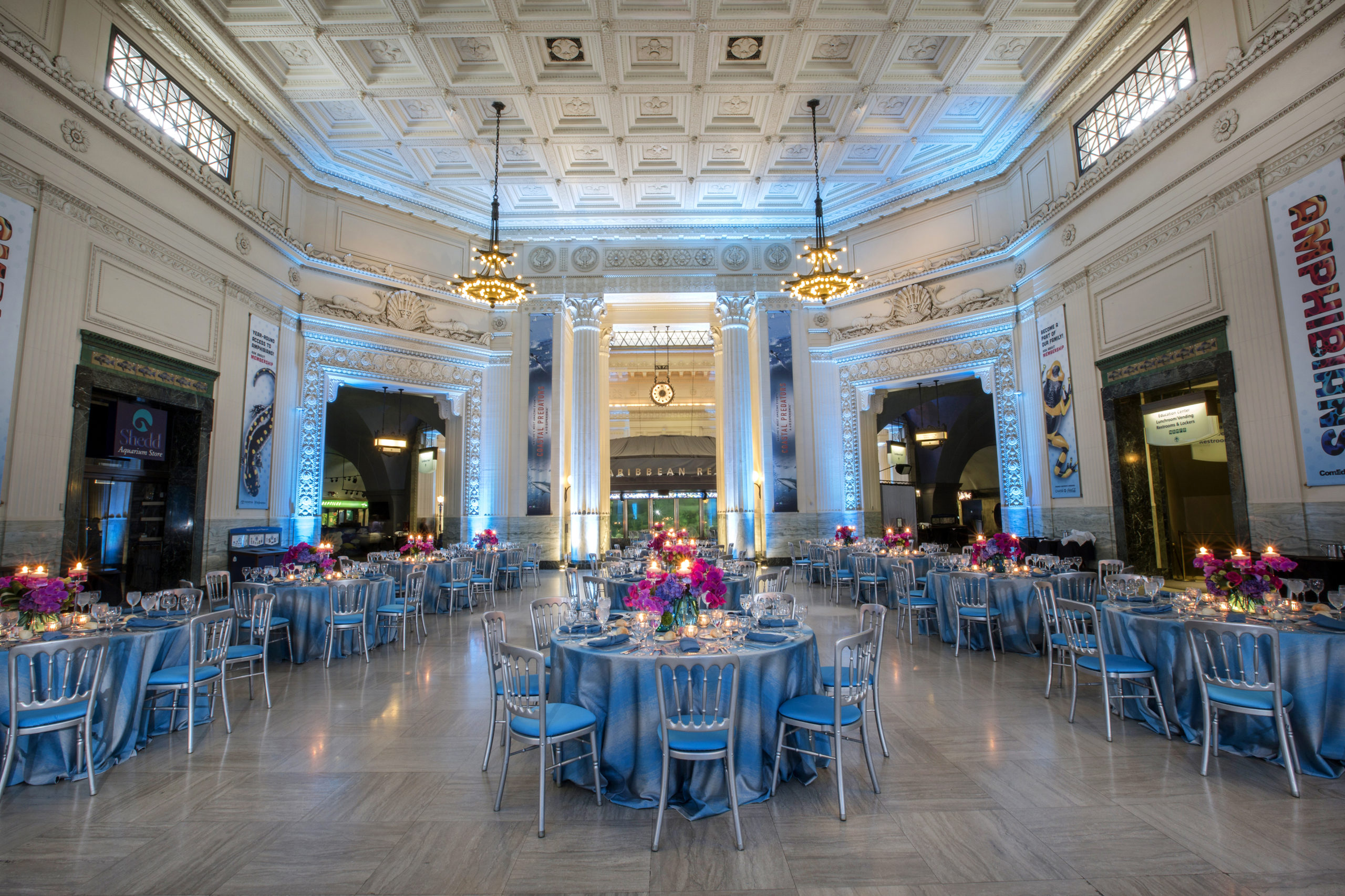 Special Event set up at Shedd Aquarium