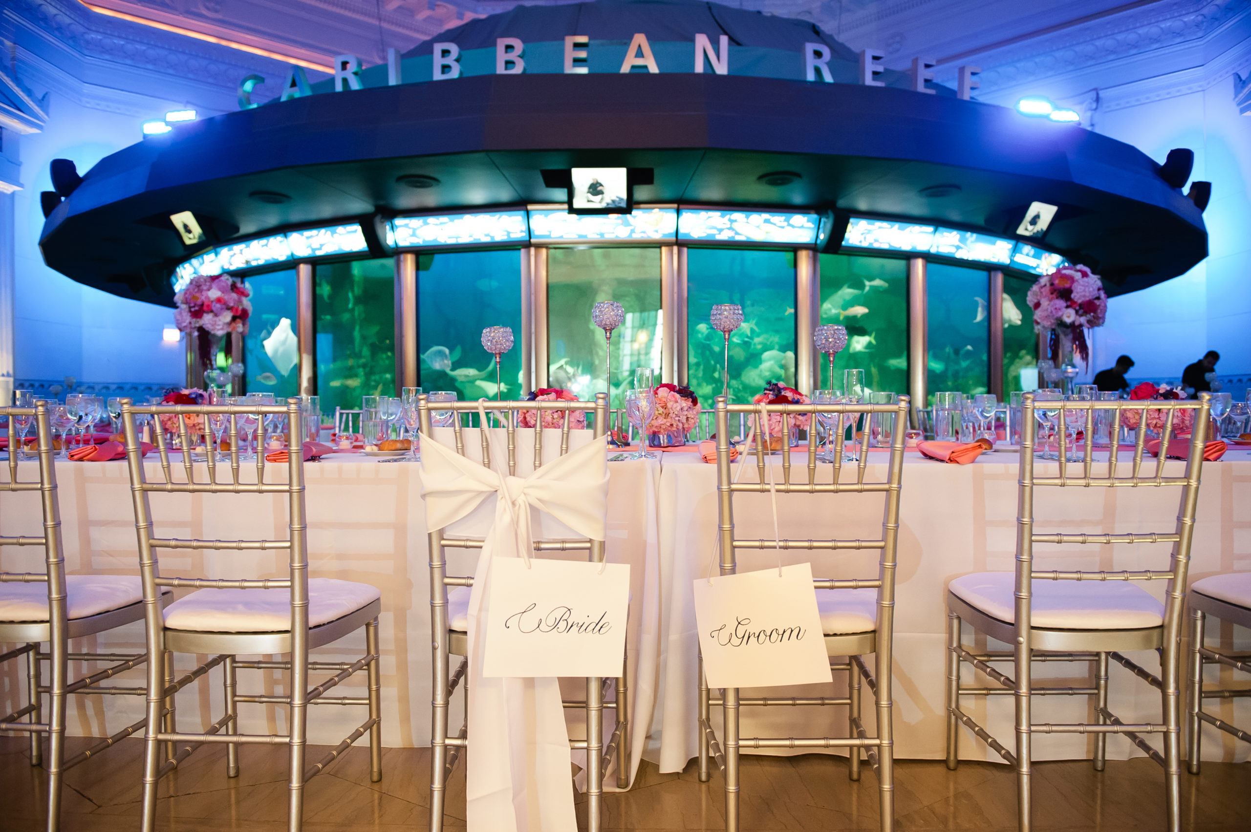Wedding set up inside Shedd Aquarium