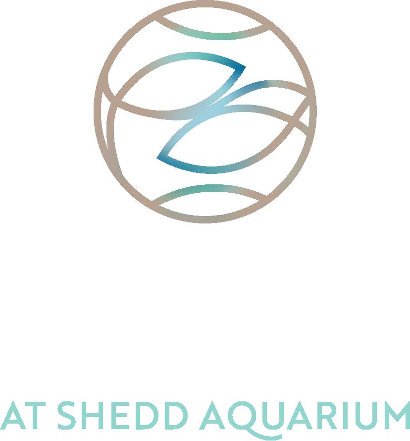 Azure at Shedd Logo