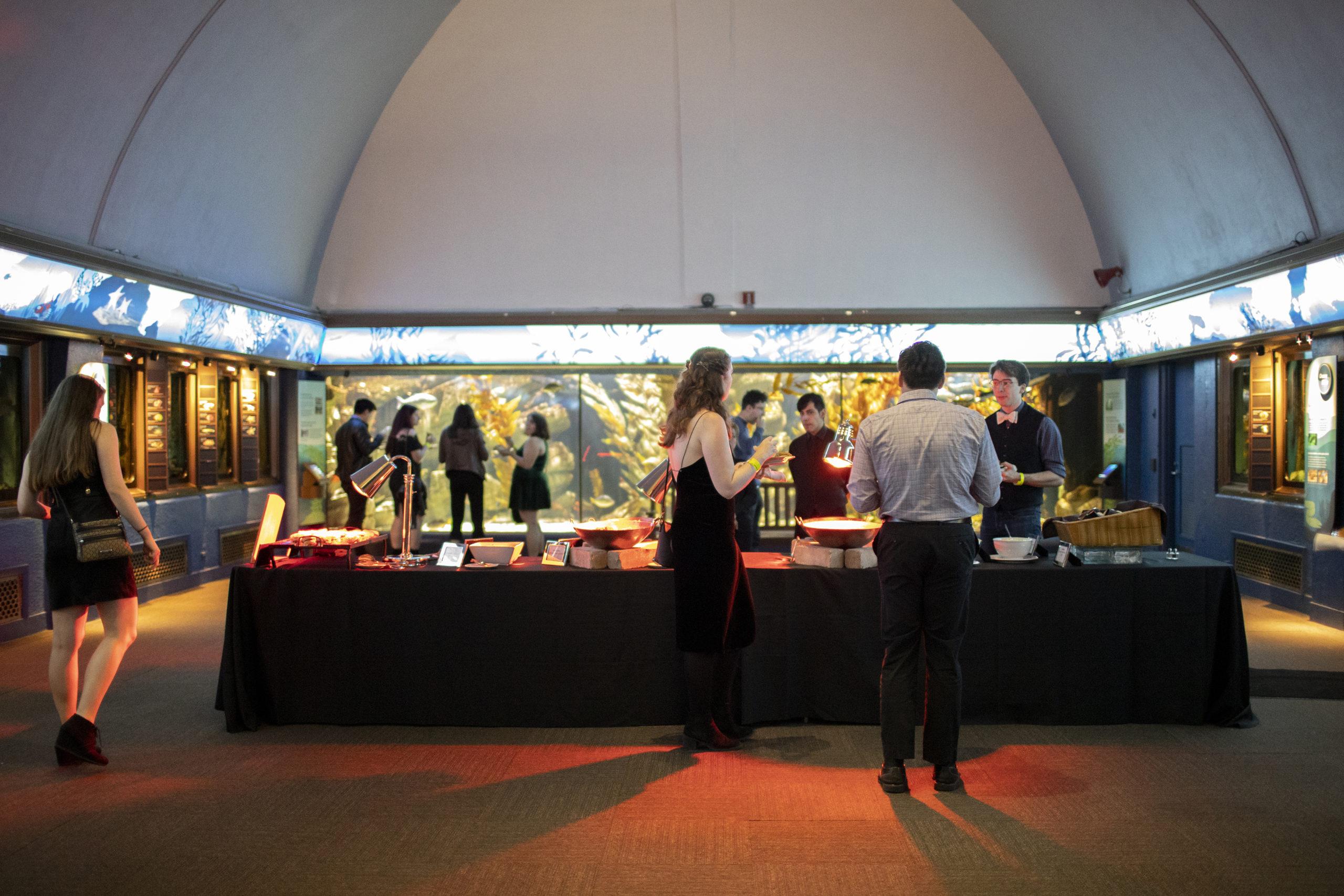 Special Event set up at Shedd Aquarium