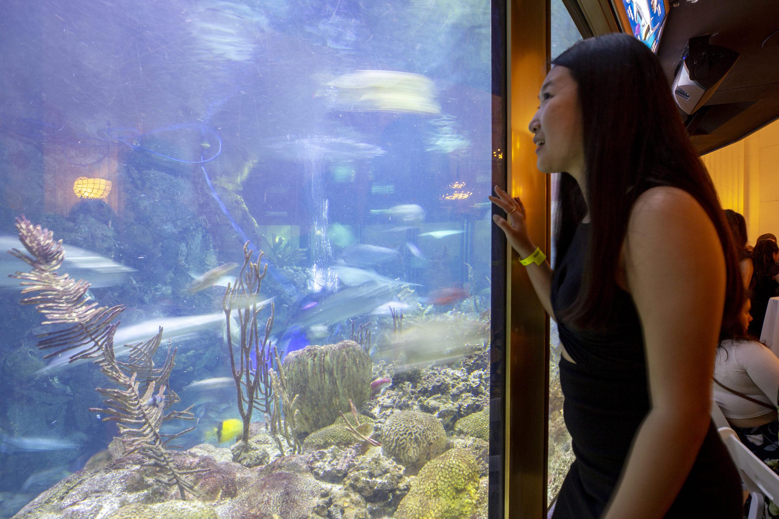 Guest enjoying event at Shedd Aquarium
